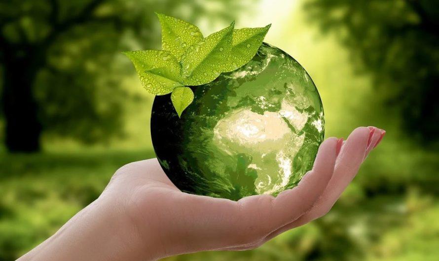 Quels sont les 27 principes de la permaculture